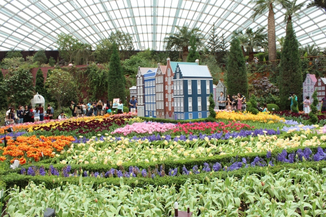 Tulip festival at Cloud Dome