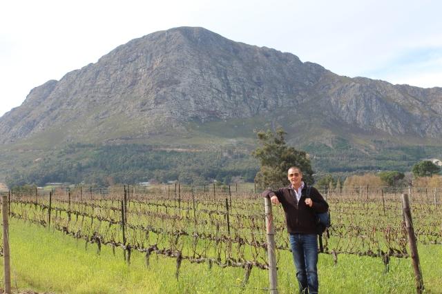 Dan in La Bri vineyard