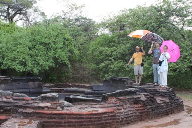 Lotus Pond at Polonnaruwa