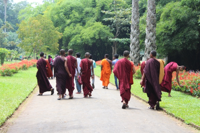 Monks enjoying the Royal Botanical Gardens in Kandy