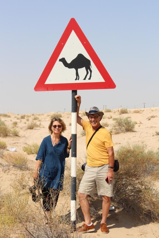 Camel Crossing!