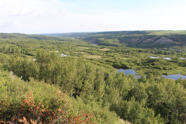 Looking south over the Red Deer River