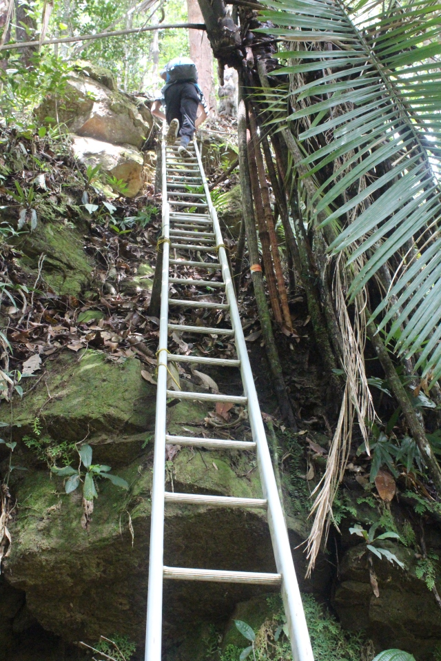 Ladders enroute to basin rim