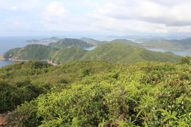 View from Sai Wan Shan